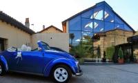 palacio_guevara_coche